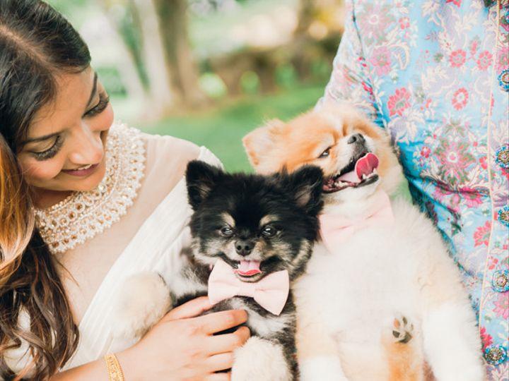Tmx 1501785396957 Dsc6253 Wilbraham wedding photography