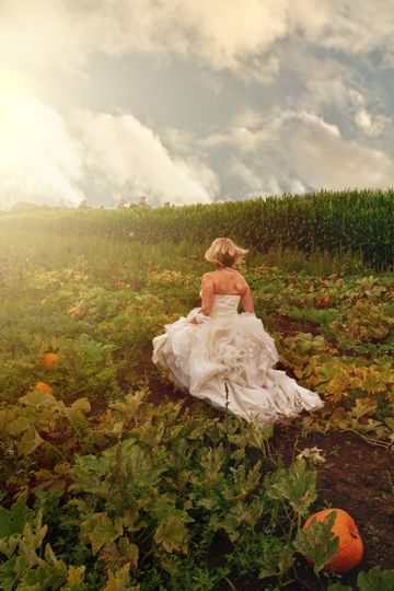 Bride in the Pumpkin Patch