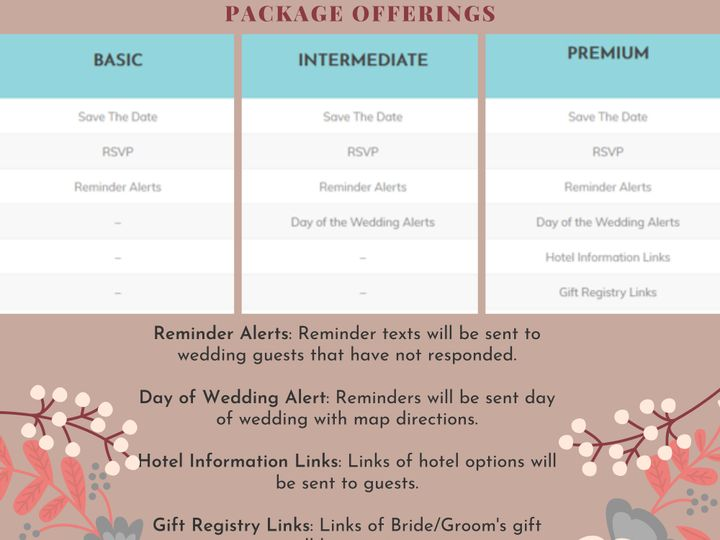 Tmx Package Options 51 1967899 159347456322845 Lakeville, MN wedding invitation
