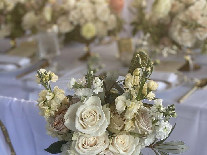 Tmx Img 6171 51 1020999 160754263930998 Lahaina, HI wedding planner