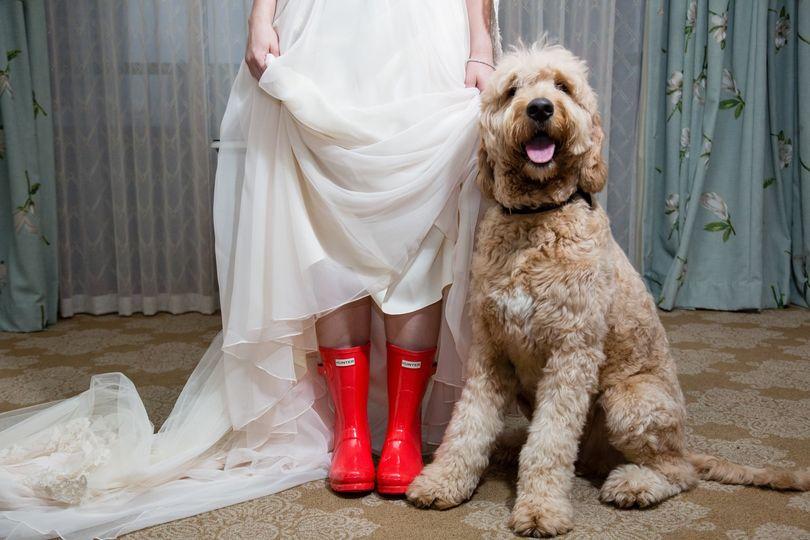 Dog and rain boots wedding