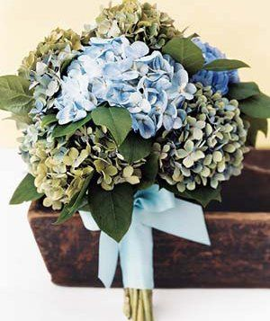 Tmx 1318536245921 Mixedhydrageabqt Oxford wedding florist
