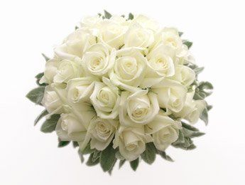 Tmx 1318536285187 Whiterosesnosegay Oxford wedding florist