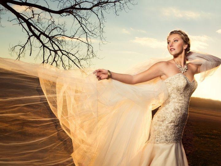 Tmx 1399149869371 010dd4bbaac4618bc3bfa5ffc9903571b51fd522160000 Ames wedding dress