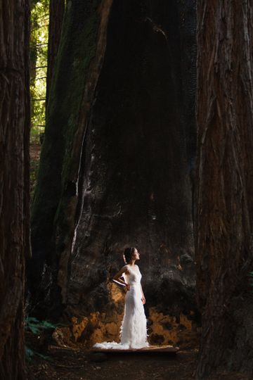 mendocinoweddingphotographs