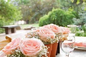 Muyly Miller Weddings