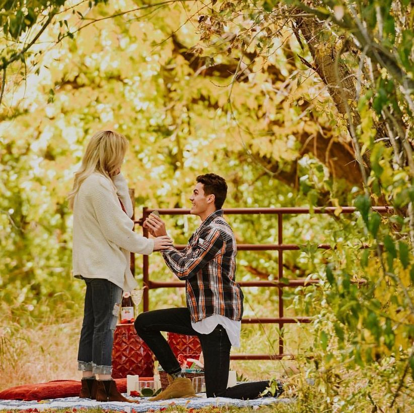 picnic wedding proposal
