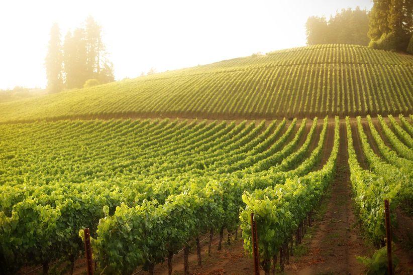 sonoma valley california