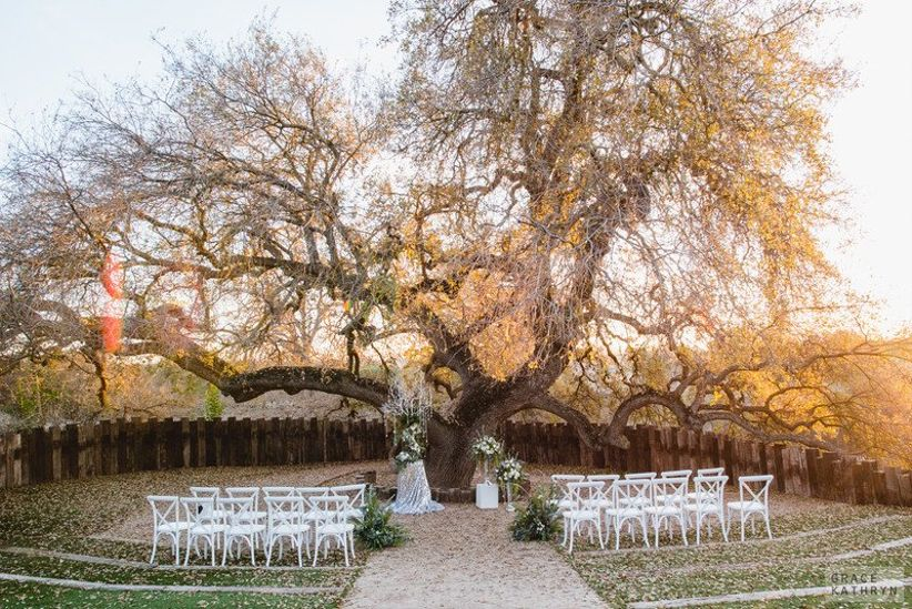 outdoor wedding ceremony space beneath large sprawling oak tree at sunset