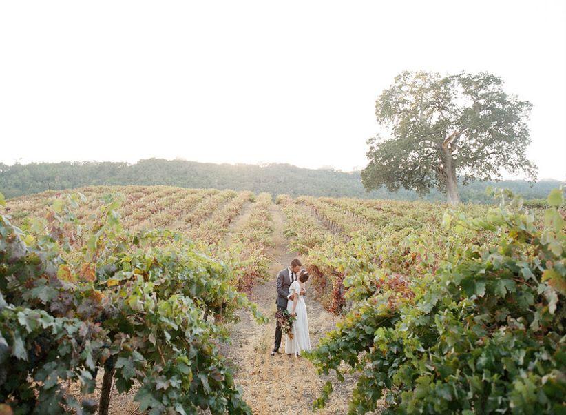 bride and groom posing in vineyard wedding venue
