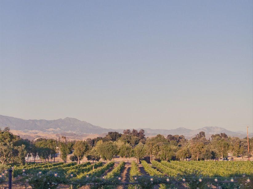 vineyard wedding venue in Santa Barbara