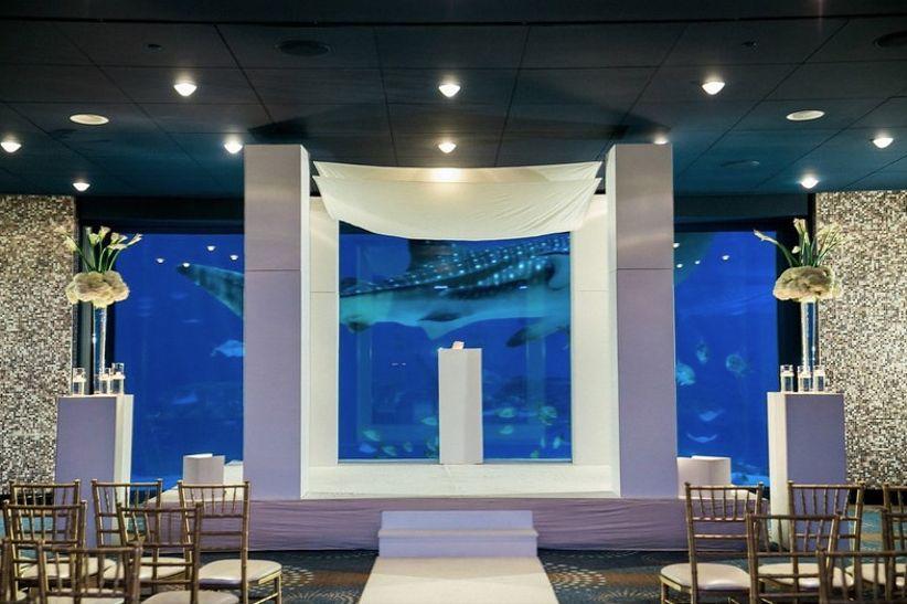 georgia aquarium wedding venue