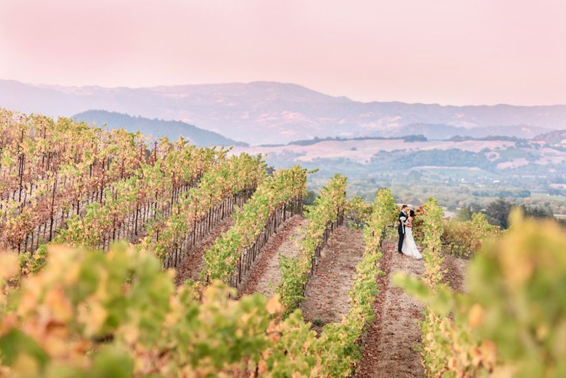 aerial shot of bride and groom posing in the middle of a vineyard with scenic mountain views in the distance