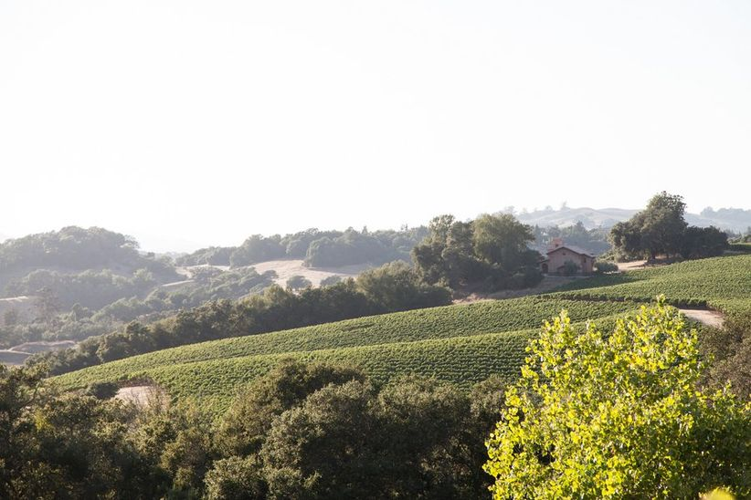 winery wedding venue in Sonoma, California with vineyard views