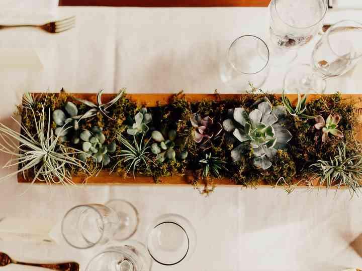 15 Succulent Wedding Décor Ideas for a Desert-Chic Vibe