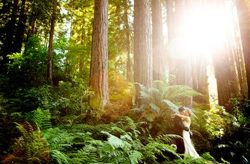 20 Nature Wedding Venues for Couples Who Love the Great Outdoors