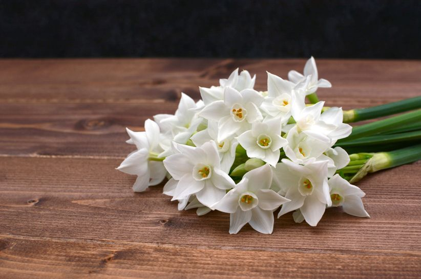 narcissus wedding bouquet with paperwhites