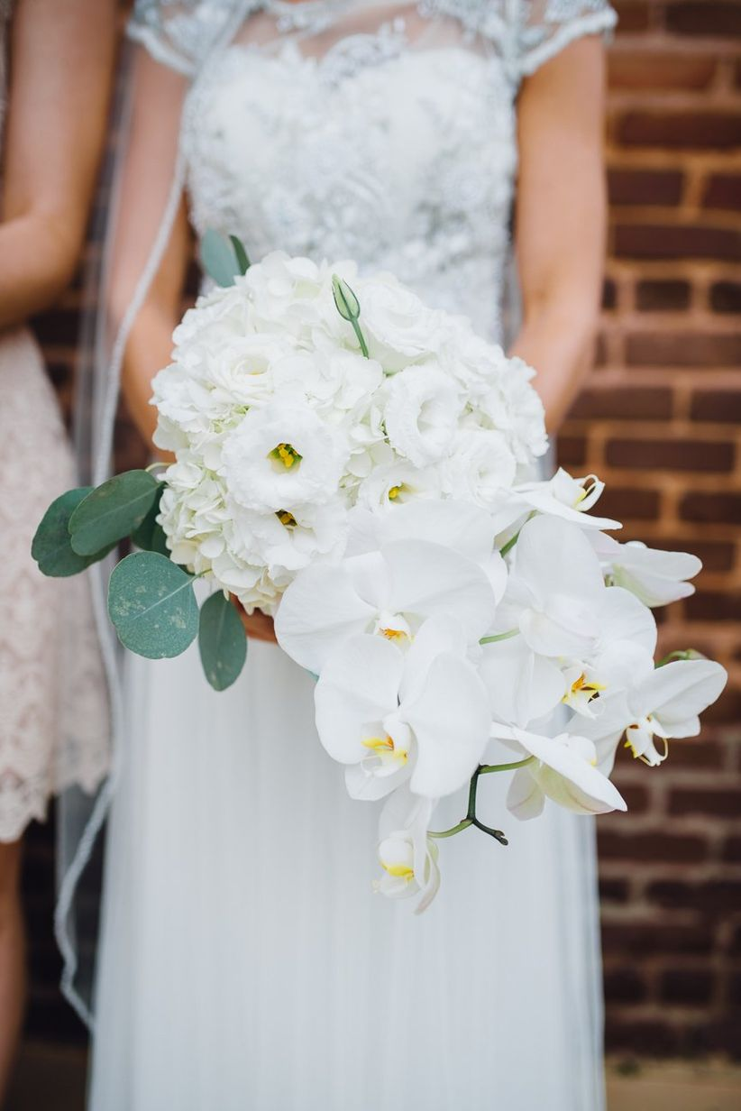 winter wedding bouquet with phalaenopsis orchids and hydrangeas