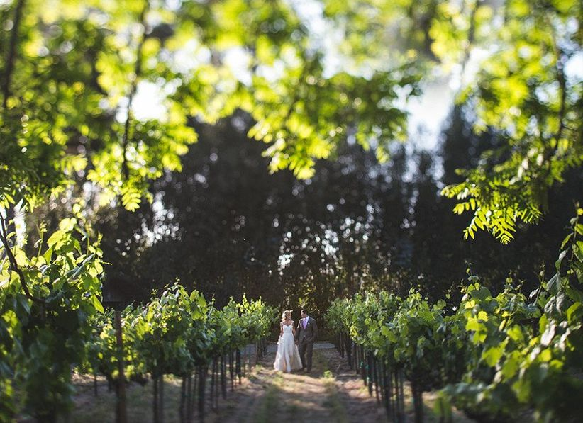 bride and groom in vineyard at The Holly Farm, Carmel, California
