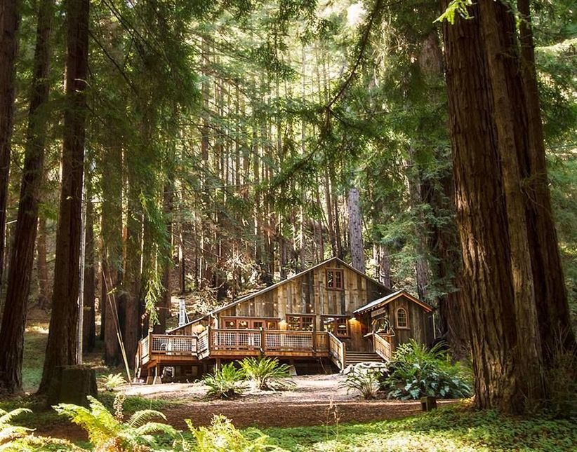 Laughing Canyon redwood forest wedding venue