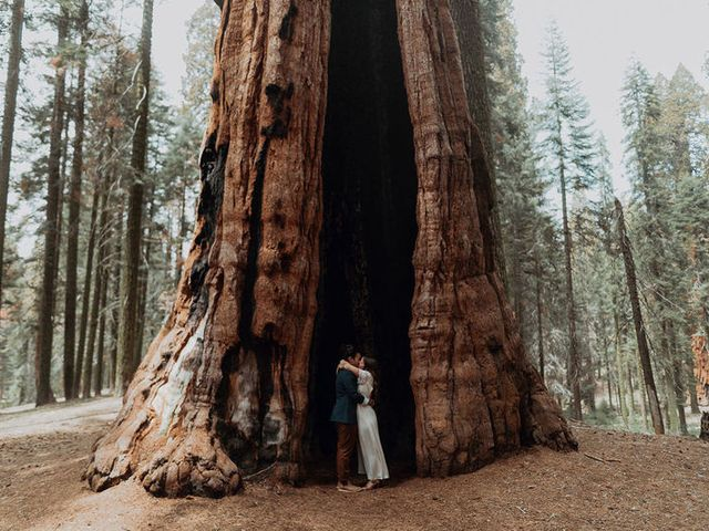 These Redwood Forest Wedding Ideas Are Seriously Magical