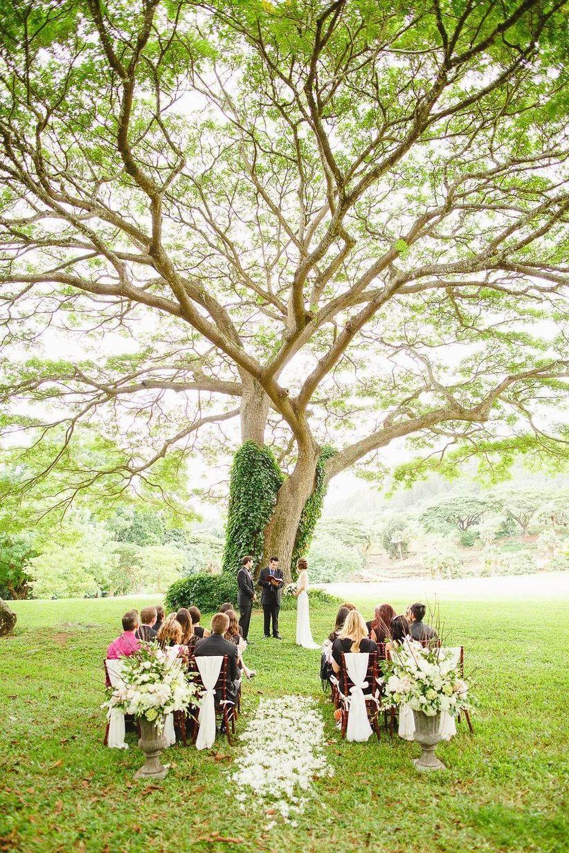 9 kauai wedding venues that prove hawaii is heaven on - National tropical botanical garden ...