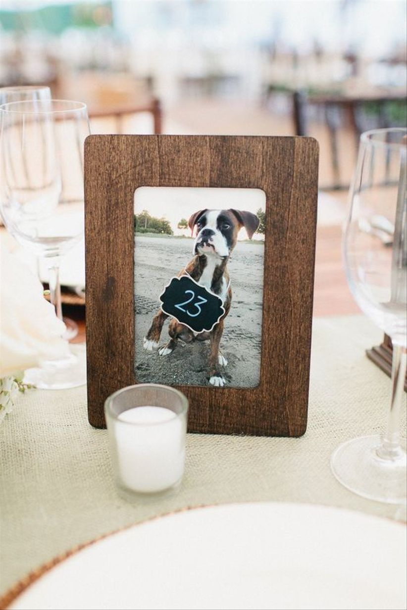 framed dog picture table number