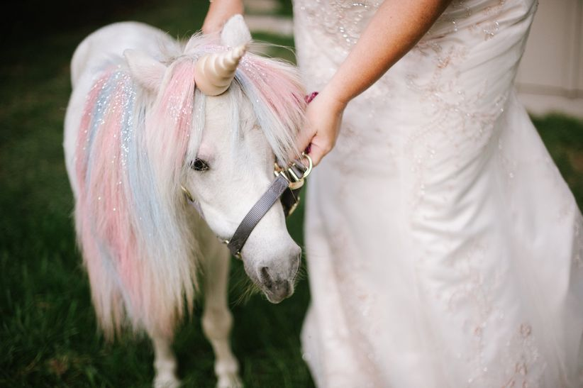 10 Unicorn Wedding Details BC Why Even Grow Up Anyway