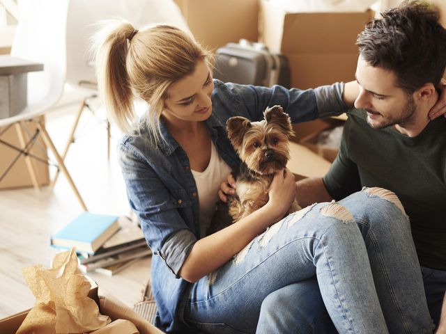 10 Questions to Ask Before Getting a Pet Together