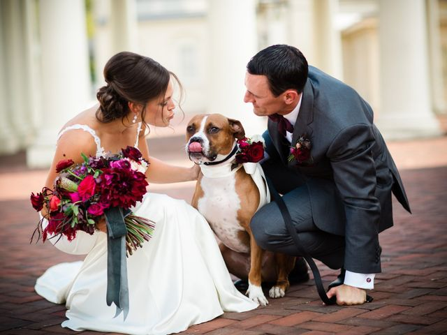 32 Photos That Prove Your Pet Should Be in Your Wedding