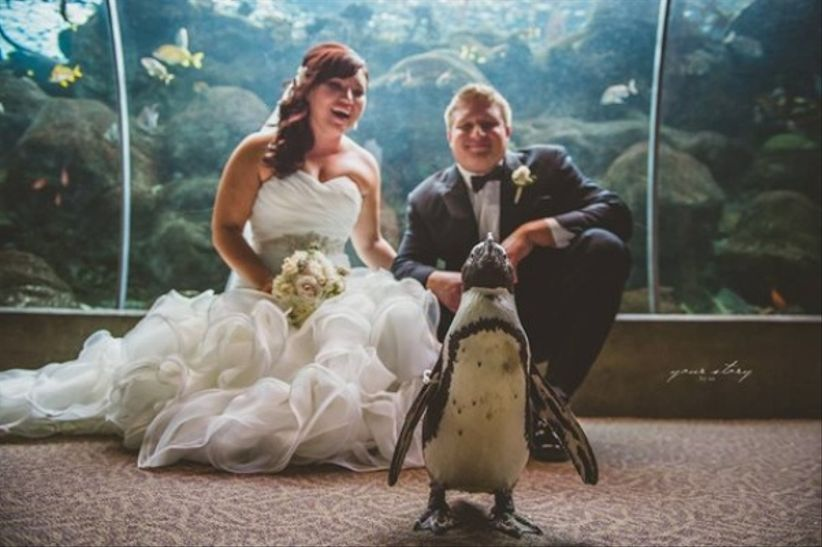 unique tampa wedding venues