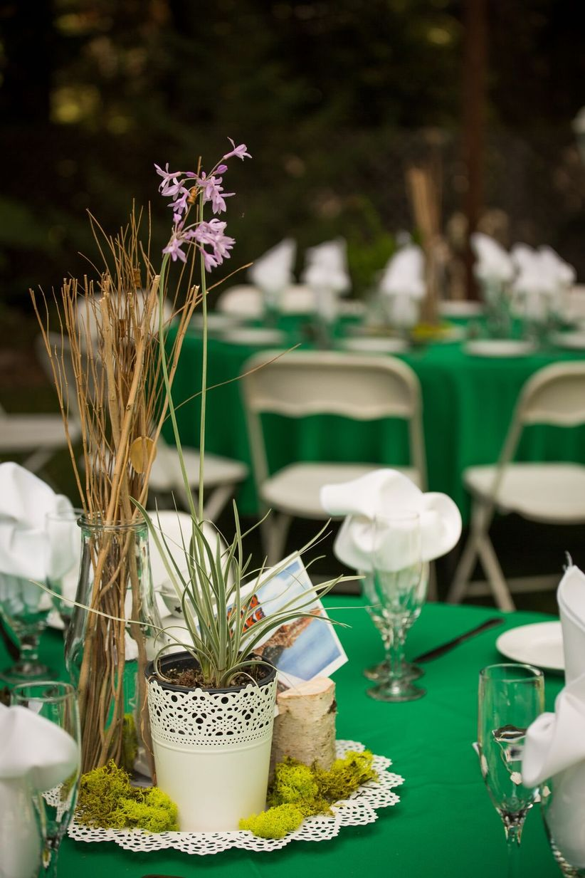 Eco-friendly wedding centerpiece idea