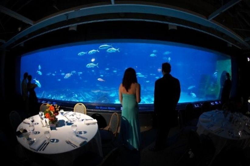 Adventure Aquarium Events & Catering