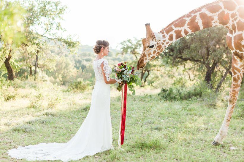 modern fall wedding ideas