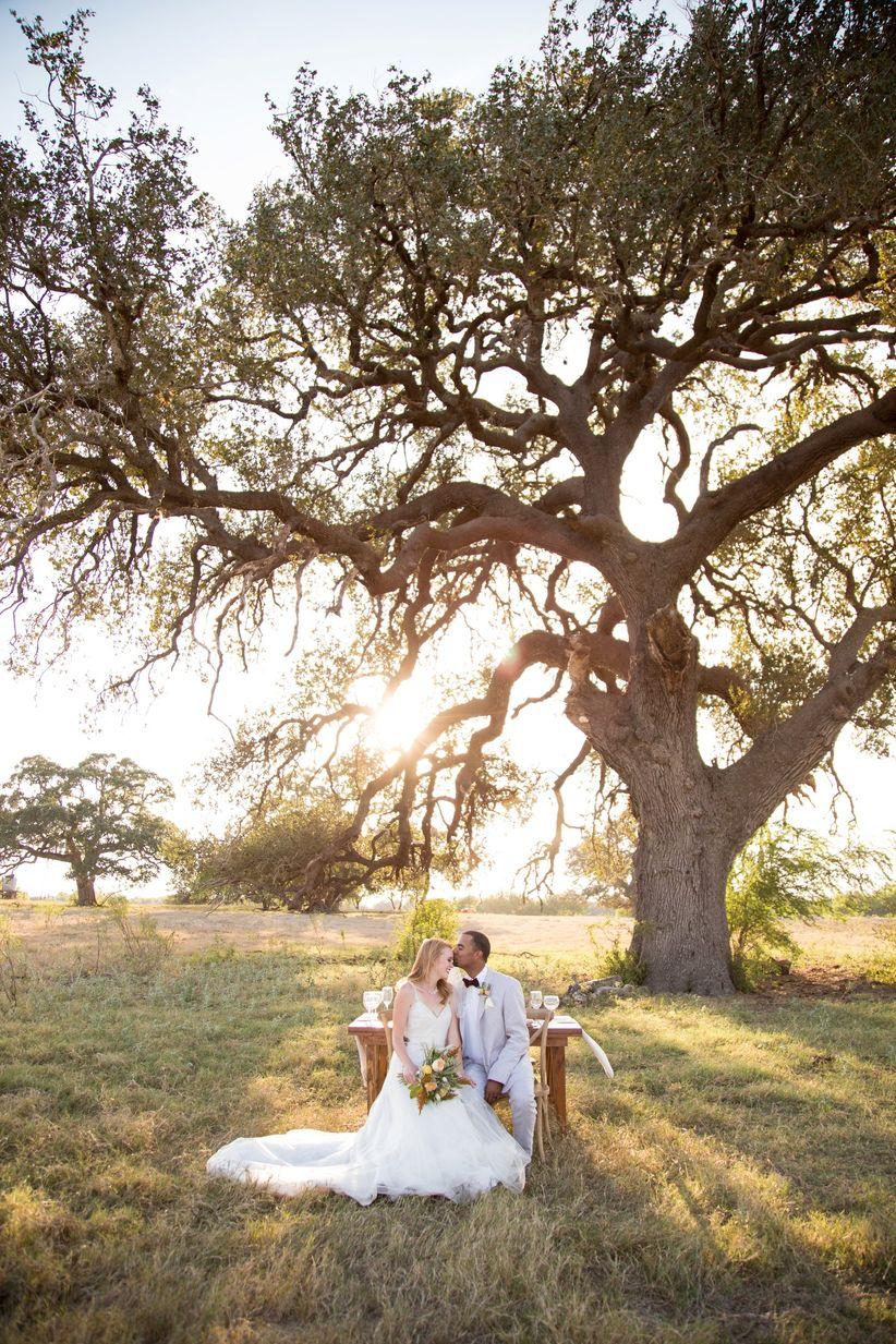bride and groom on a farm under scenic tree - dawn elizabeth studios