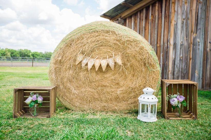 rustic wedding venues in tampa