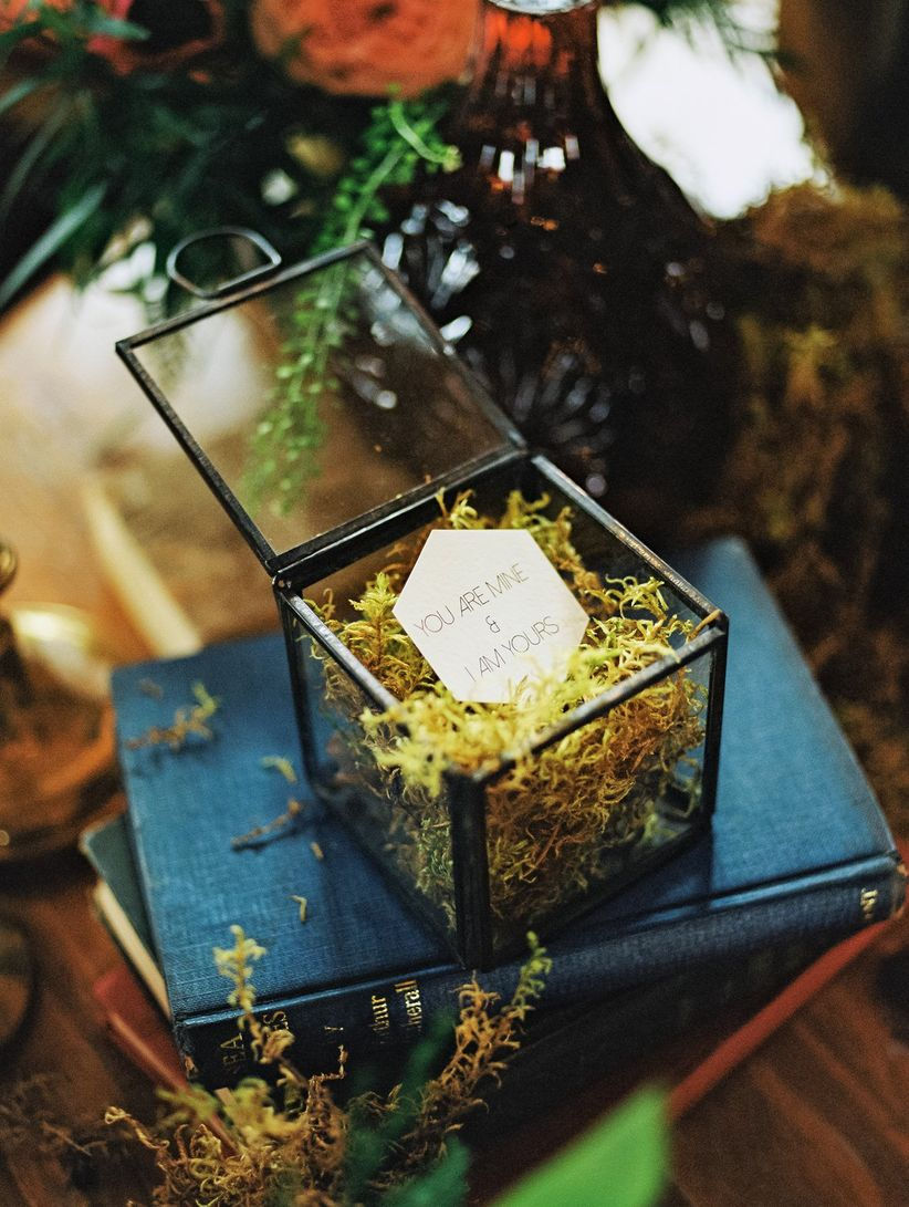 note displayed in vintage glass box with moss on vintage hard backed books