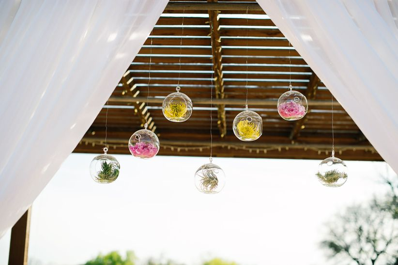 hanging glass orbs with proteas