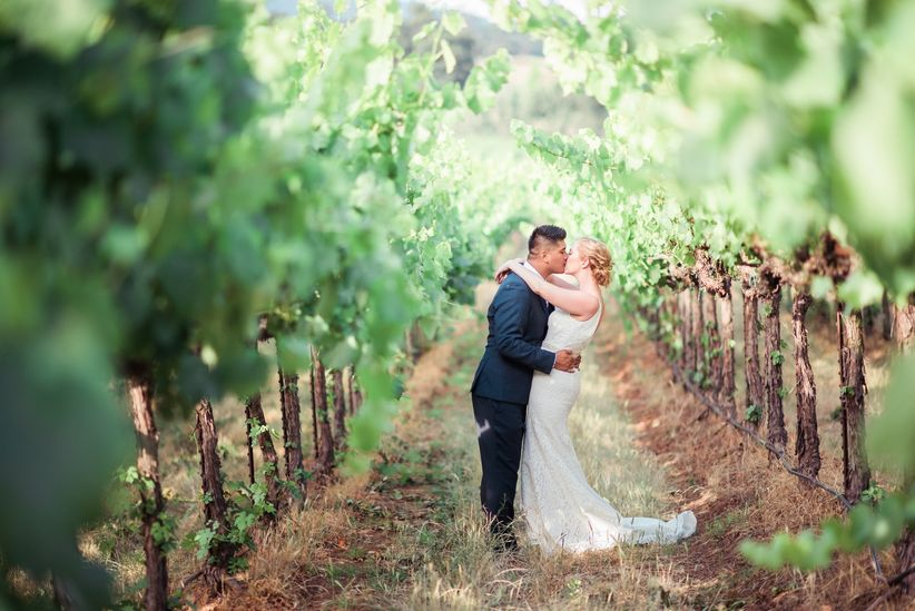 vineyard wedding patrick nied photography