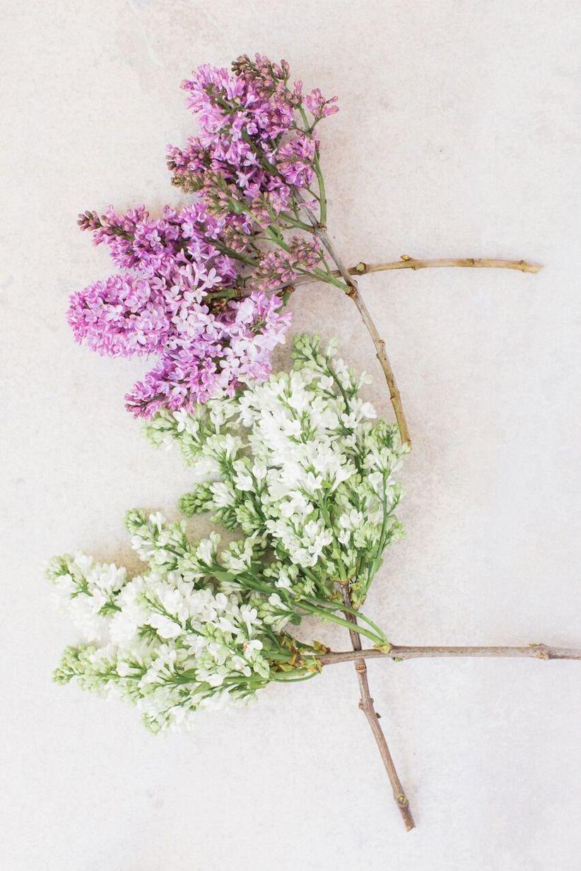 10 Spring Wedding Flowers We Love Weddingwire