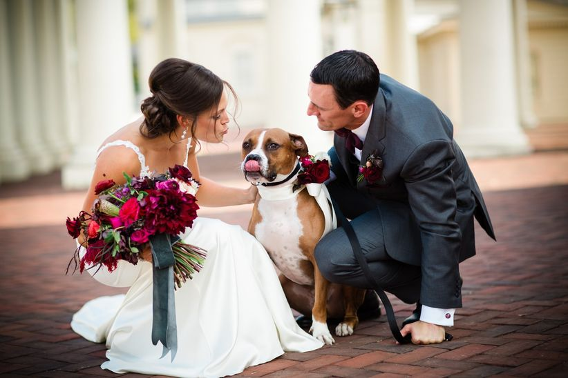couple with dog kisses