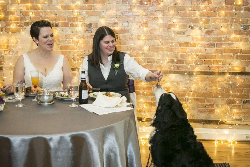 couple feeding dog at reception