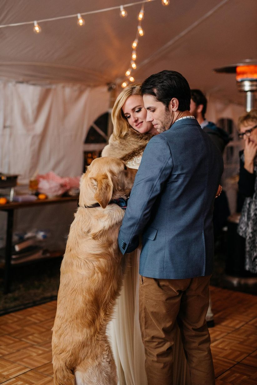 couple and dog first dance