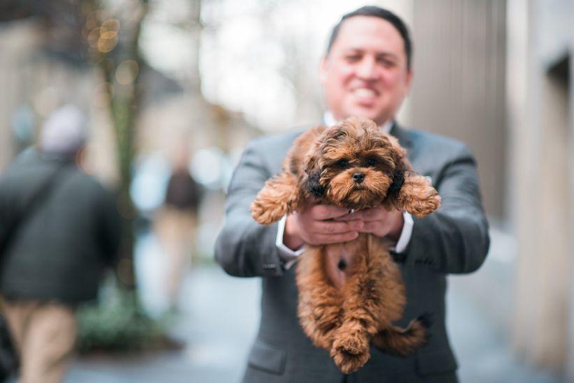 groom holding dog