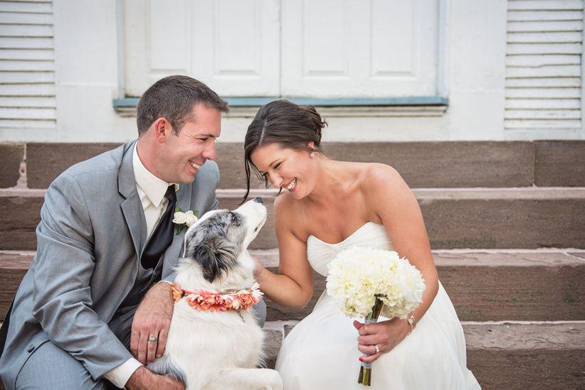 dog with couple photo