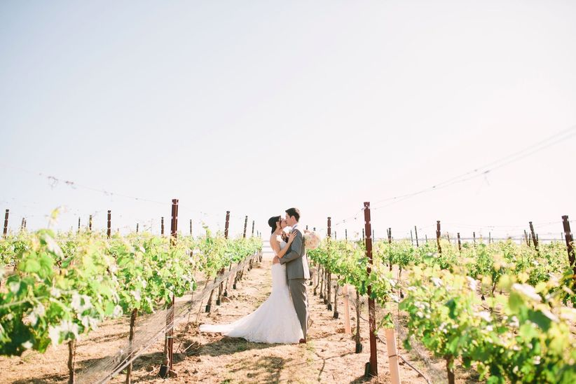 23 winery wedding ideas for anyone getting married at a vineyard bride and groom posing in a vineyard junglespirit Choice Image