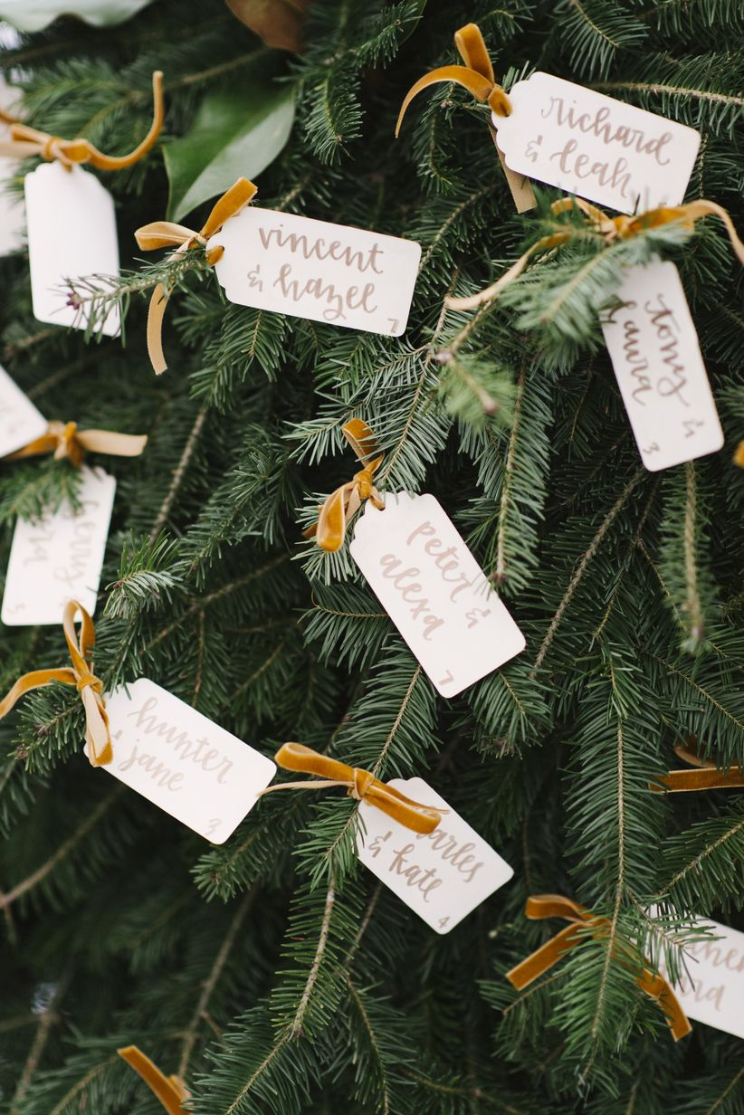 winter escort cards with evergreen tree branches