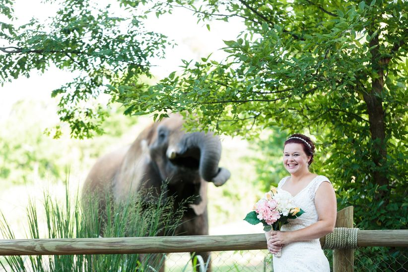 bride at zoo wedding