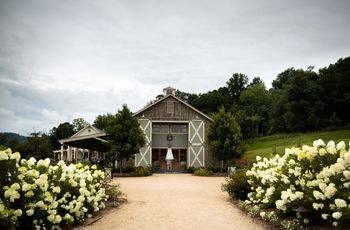 7 Charlottesville Vineyard Wedding Venues for Wine Lovers
