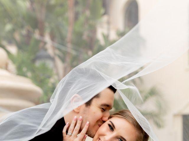 Andrew and Desiree's Wedding in Orlando, Florida 2